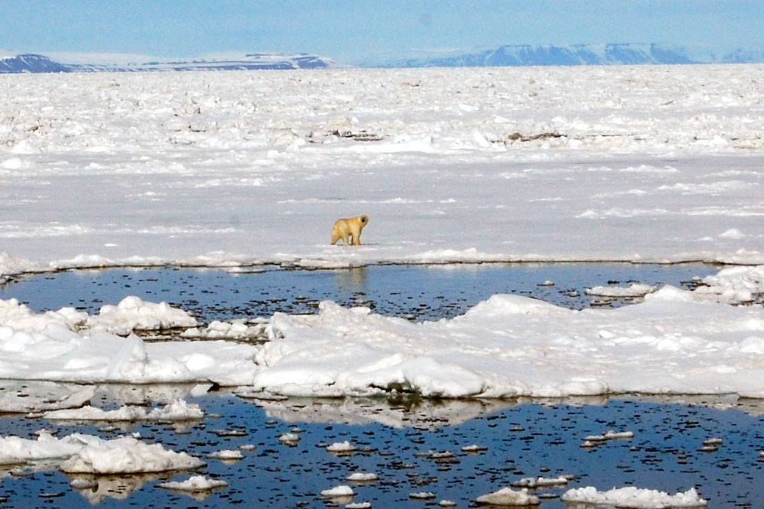 spitsbergen-33